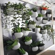 Magnetukai su dirbtiniais tikroviškai atrodančiais augalais